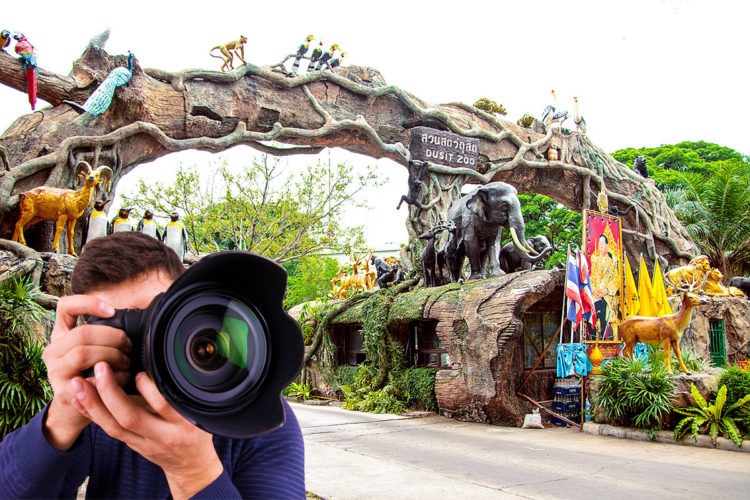 Professional photography service at Dusit Zoo in BKK