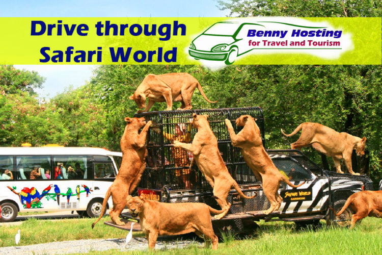 Thailand's great open zoo and leisure park at Safari World